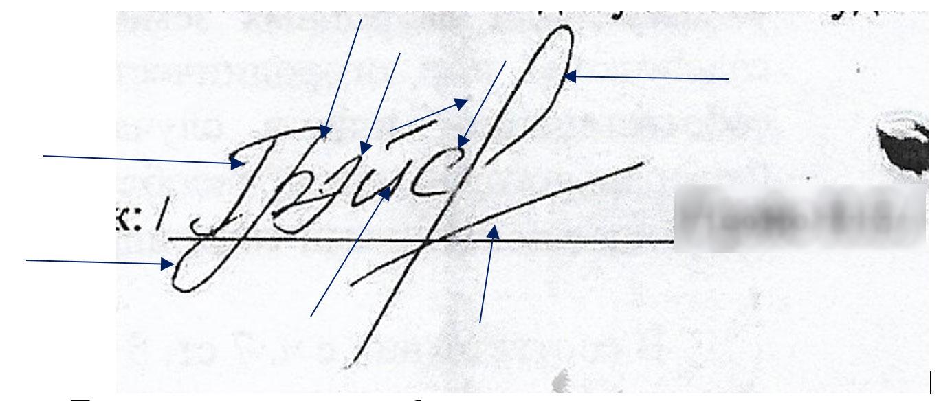 Заключение экспертизы подписи на документе